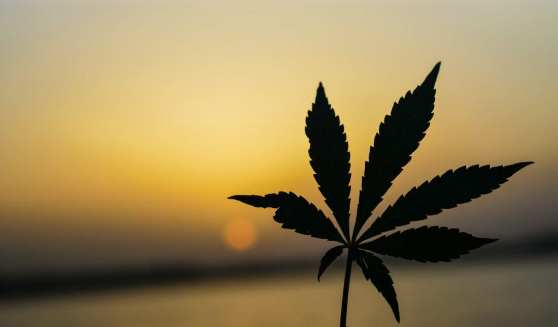 How some legislation could affect drug testing!